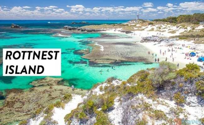 Why Rottnest Island Should Be On Your Australian Bucket List