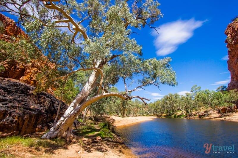Ormiston Gorge - West MacDonnel Ranges, Northern Territory, Australia