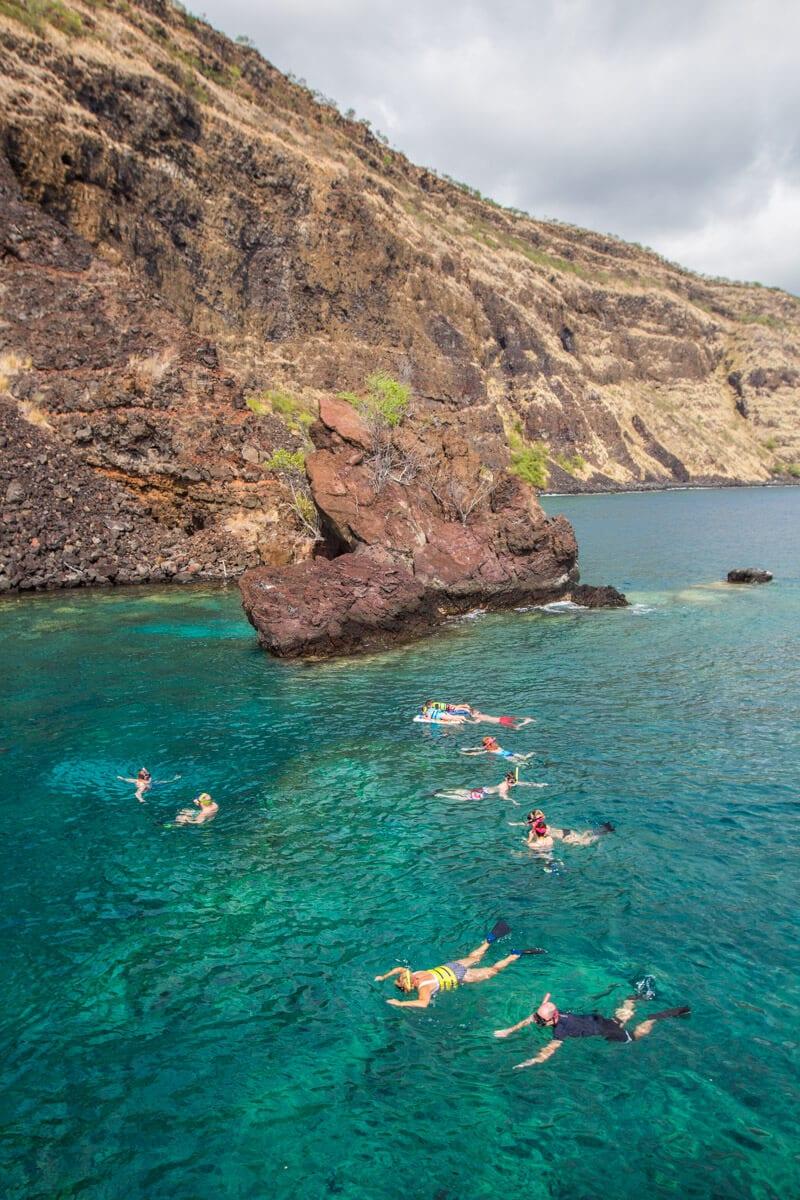 Snorkeling at Kealakekua Bay on the Kona Coast of Big Island Hawaii