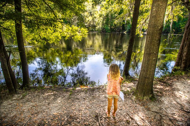 Suwannee River State Park, North Florida
