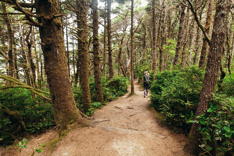 Hobbit Trail Hike Oregon coast