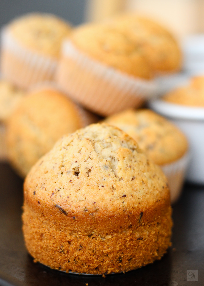 Muffins de coco y chocolate