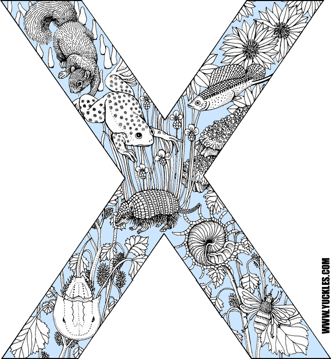 letter x coloring pageyuckles!