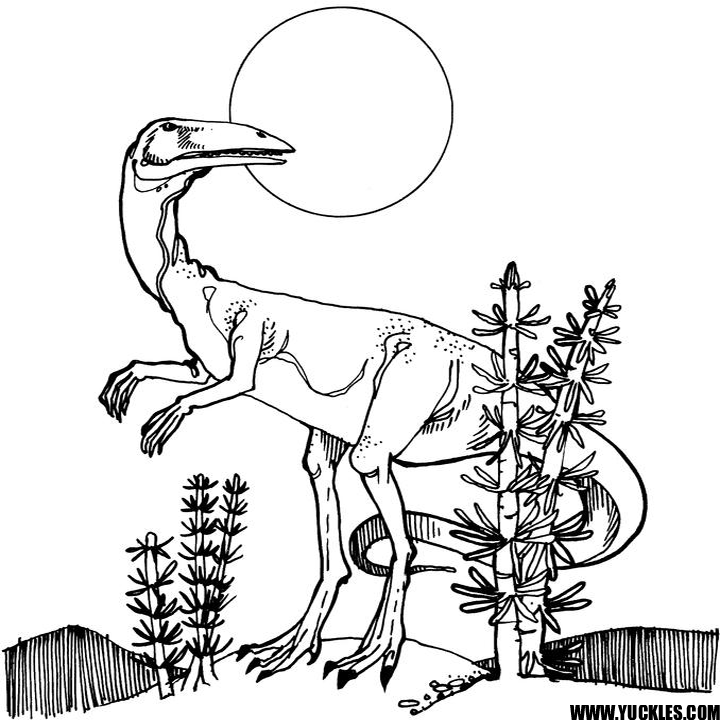 Coelophysis Coloring Page By Yuckles