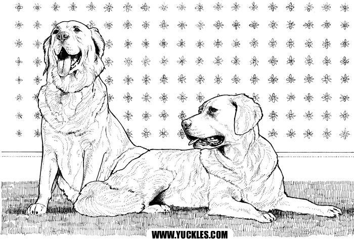 Labrador Retriever Coloring Page By YUCKLES