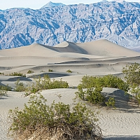 Won-t-be-a-desert-without-some-sand-dunes