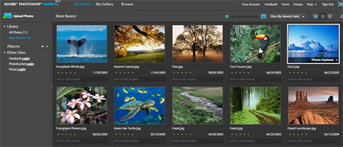 Adobe Photo Gallery