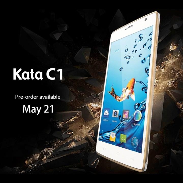 kata-c1