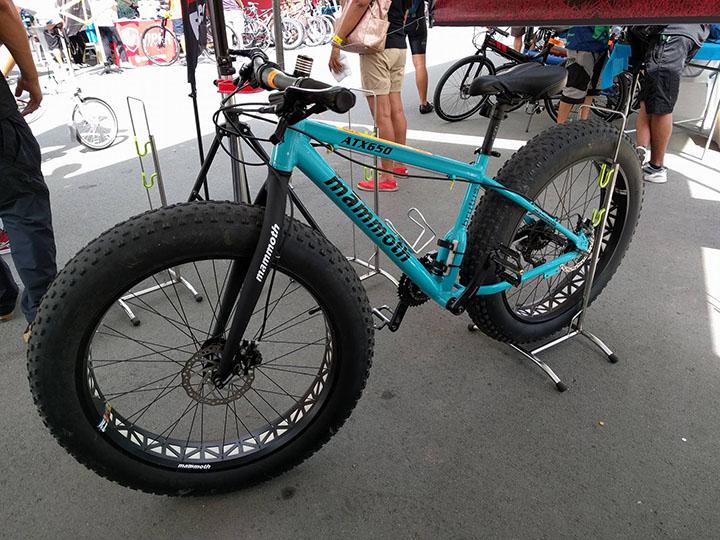 bike-demo-day-3