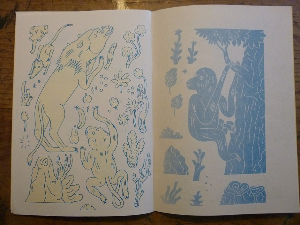 Jon Boam - Natural Historic riso zine