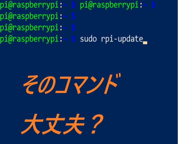 やらないで!! rpi-update