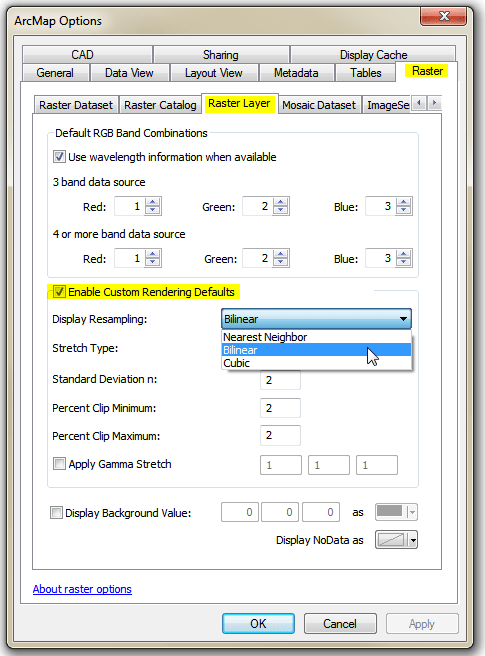 Arcmap Raster Options dialog panel