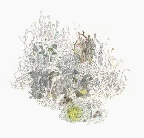 graphics, paper, aquarelle, pencil