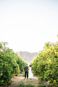 Romantic pictures of Bride and groom at From the Farm in Yuma, Arizona. The bride and groom also took portraits in near by lemon groves.