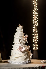 Wedding of Brittney and William in Yuma, Arizona.