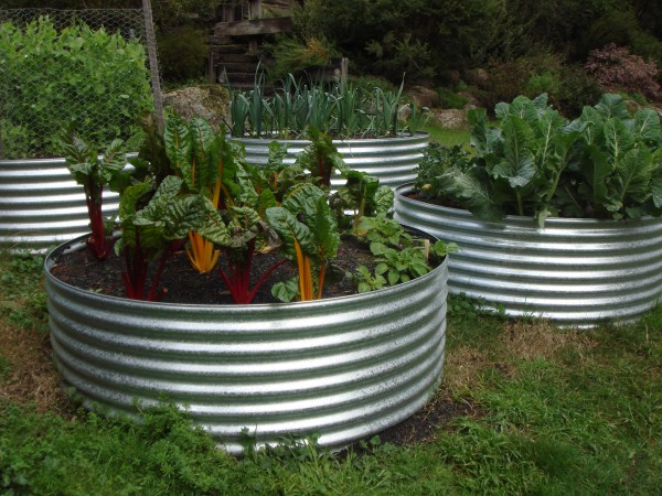 Vegetable Garden Box Melbourne