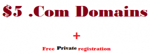 .com domains free private registration godaddy coupon 2013