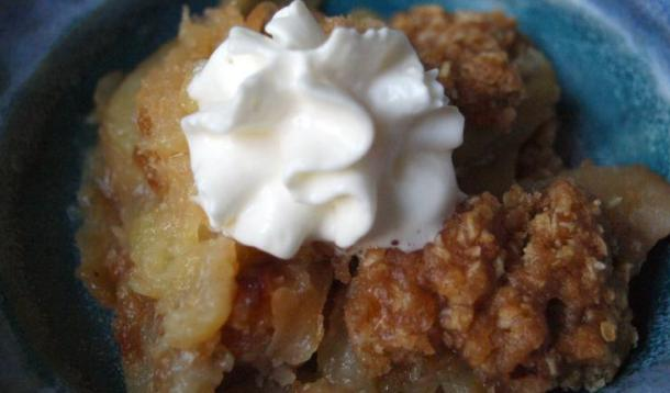crockpot apple crisp recipe yummymummyclub ca