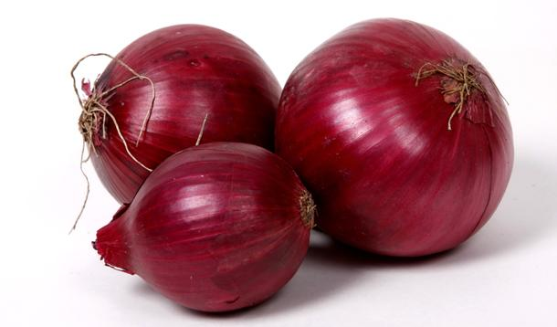 Image result for Onion images