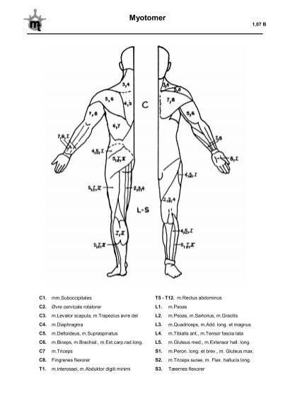 Dermatomer 1,07 A