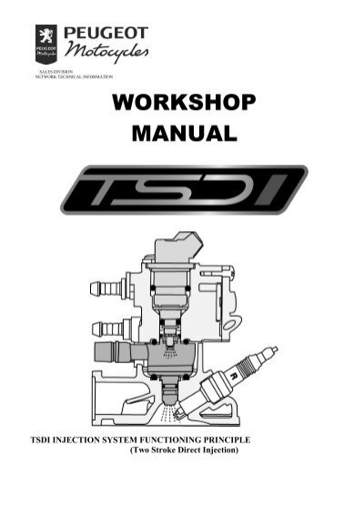 Peugeot workshop manual TSDI injection system