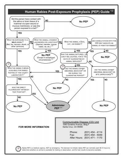 Human Rabies Post-Exposure Prophylaxis (PEP) Guide