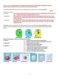Cell Membrane And Tonicity Worksheet. Lesupercoin