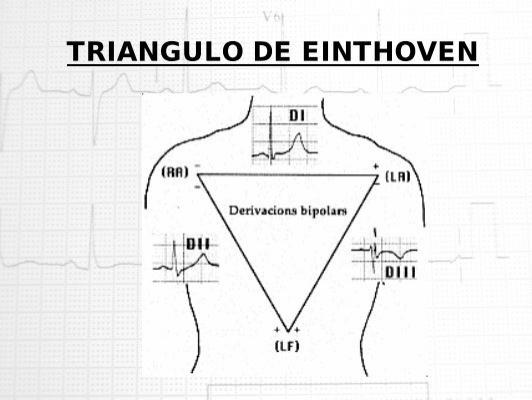 TRIANGULO DE EINTHOVEN