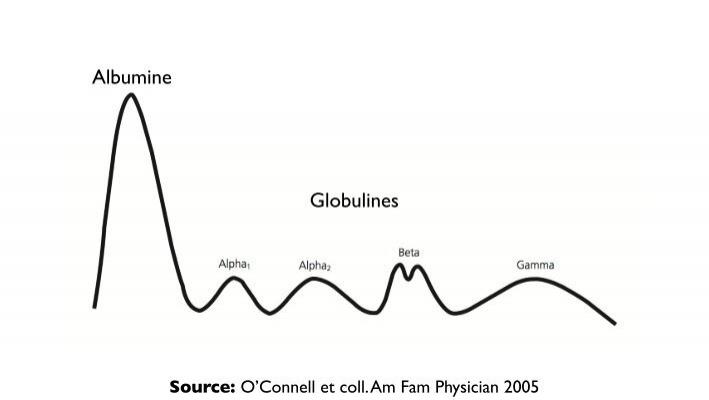 Albumine Globulines Sourc