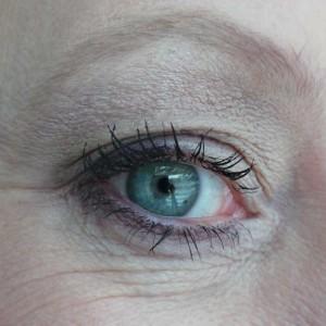 Eyeshadow-palette---Terra-Naturi---Yustsome---5