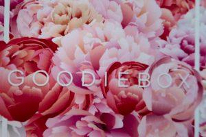 Unboxing 2   GOODIEBOX