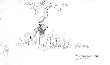 Yazd-cep-vigne-1800
