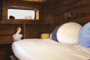 bun-van-bed-12-circu-magical-furniture-jpg