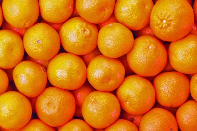 Palagonia, arrestato paternese per furto di arance