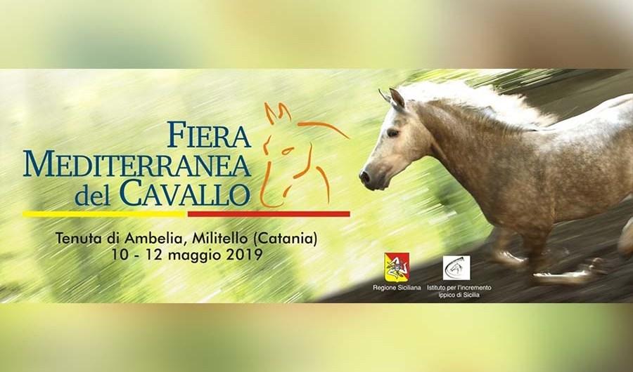 """Militello. Dal 10 al 12 maggio la """"Fiera Mediterranea del Cavallo"""""""