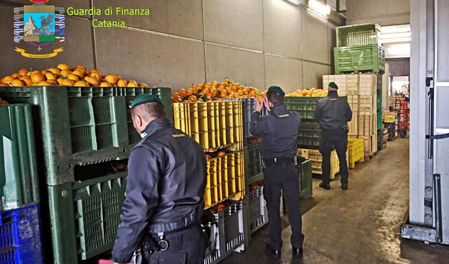 Furti e truffe di agrumi, sequestrate 36 tonnellate di arance di dubbia provenienza