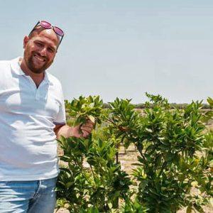 Ladri di arance alla Piana di Catania, Giosué Arcoria: «Quinto furto in pochi mesi»
