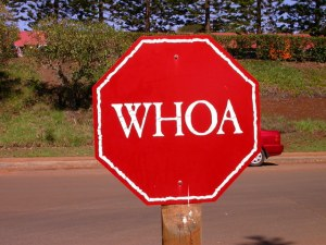 The word Whoa on a stop sign