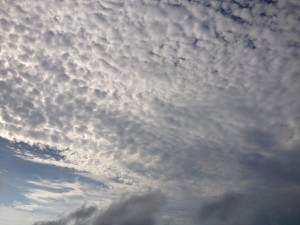 mackerel sky