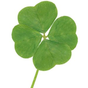 Couples Therapy Los Angeles - Creating Your Own Luck