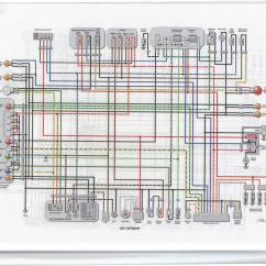 2000 Yamaha Yzf R6 Wiring Diagram Bean Seed Worksheet Fzr600r