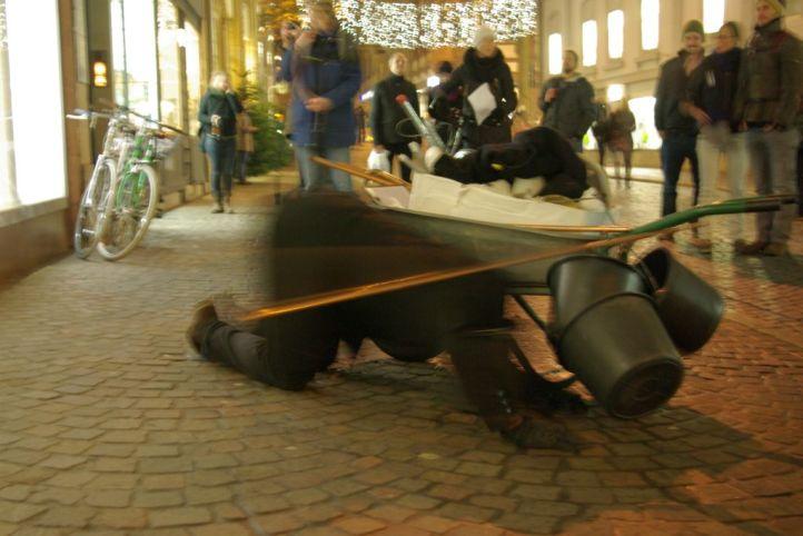 Performance-Palm-R15019-Copyright-Marcel-Oettrich-2014