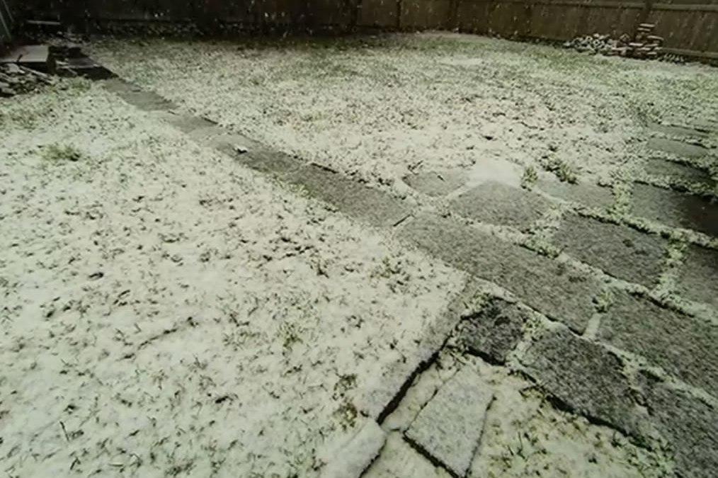 Snow Time Lapse