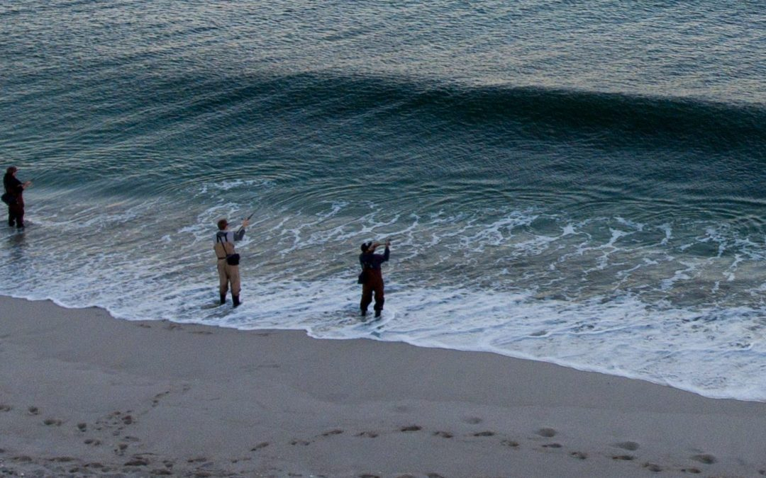 Surf Fishing New Jersey Fall 2016