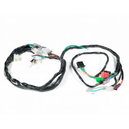Main Wiring Harness CBX