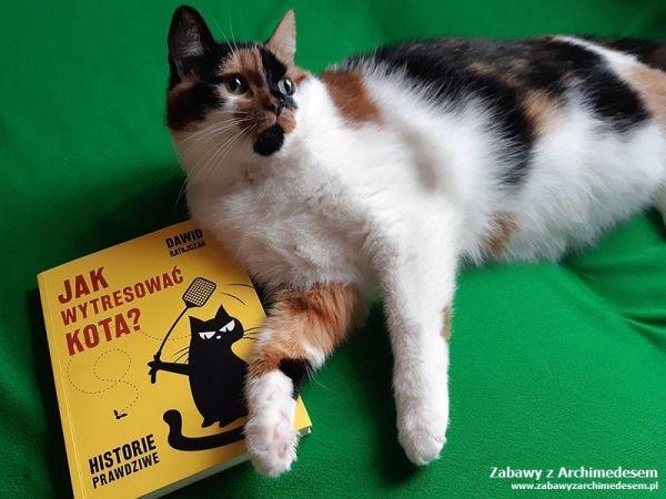 Jak wytresować kota? Historie prawdziwe