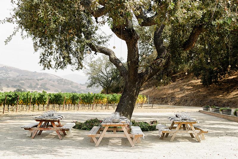 Picnic tables under oak tree