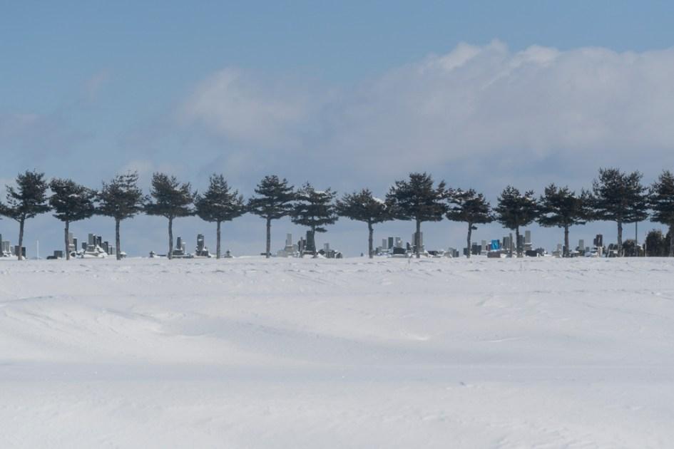 旅行|北海道|冬天
