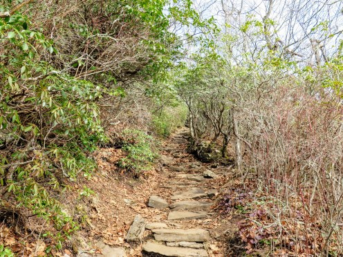 So many rock steps on the Mount Pisgah Trail