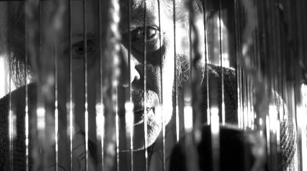 PD-eliz-thru-cage